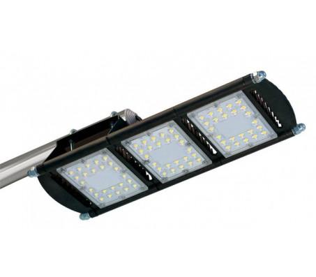 Уличный светодиодный светильник ДКУ 29 CARBON